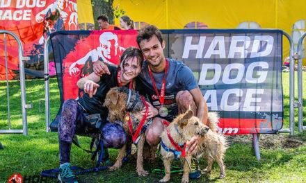 Hard Dog Race – sześć nóg, dwa serca, jedno zwycięstwo!