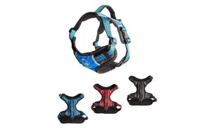 Sportowy pies nosi sportowe szelki ALLFORDOGS.PL!