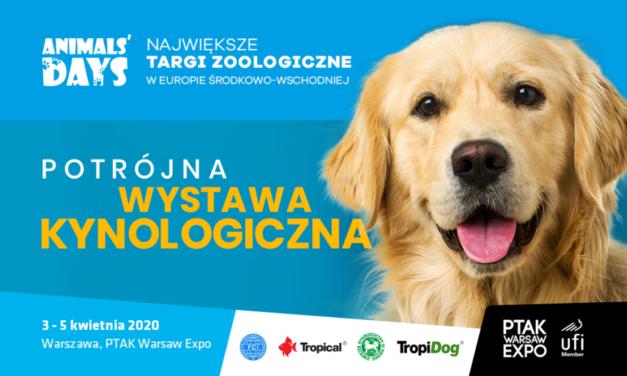 Trzy Wystawy podczas Animals Days 2020