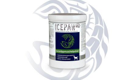 ICEPAW omułek zielonowargowy – naturalny dodatek diety dla szczeniąt dużych ras, psów sportowych ipsich seniorów