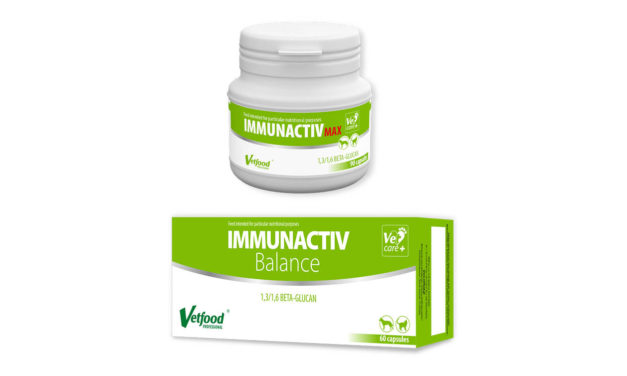 Immunactiv Balance, Immunactiv Max, Immunactiv Balance Feline – wsparcie odporności Twojego pupila
