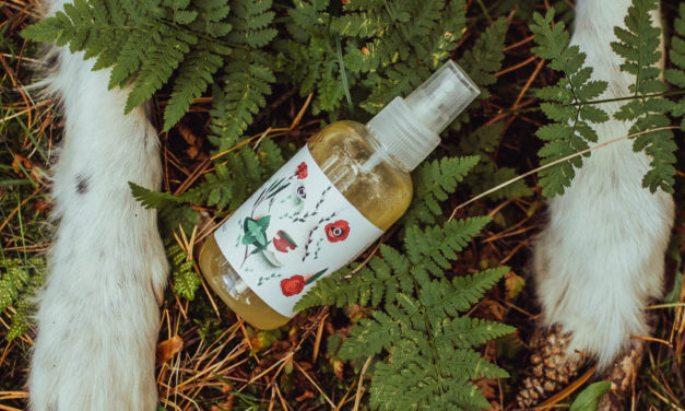 Naturalny olejek marki PositiveCare – na komary i kleszcze!