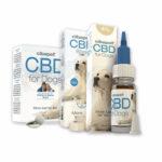 CBD Cibapet – ważna rola wpoprawie jakości życia twojego pupila