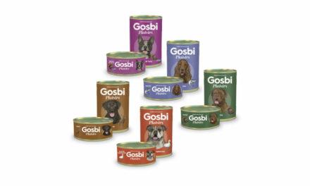 GOSBI PLAISIRS – już wsprzedaży!