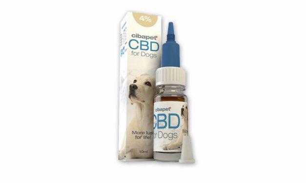 Olejek 4% CBD Cibapet – dedykowana receptura dla psa