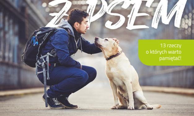 Wyjazd z psem na wakacje! O Czym warto pamietać?