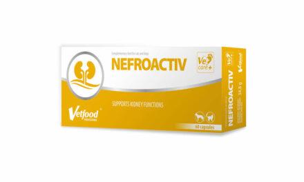 NEFROACTIV – dla zdrowych nerek Twojego pupila!