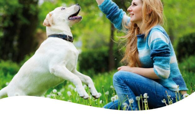 Karma dla psów wymagających odpowiedniej diety