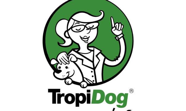 Psi kanał na YouTube. Zajrzyj do TropiDog Radzi!