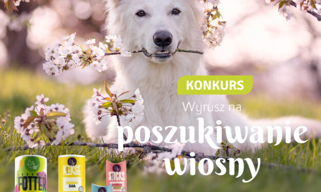 REGULAMIN KONKURSU: Wyrusz na poszukiwanie wiosny