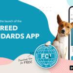 FCI Breeds Nomenclature – nowa aplikacja mobilna zwzorcami ras psów