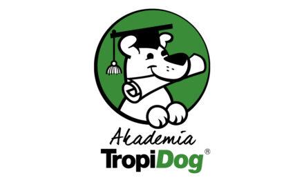Pierwszy taki projekt w Polsce– Akademia TropiDog!